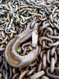 Chain and Hook Royalty Free Stock Photos