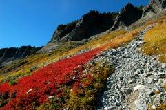 Chain Lakes Trail Royalty Free Stock Photo