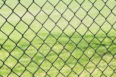 Chain link fence against grass Royalty Free Stock Photography