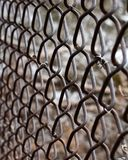 Chain link fence close up royalty free stock image
