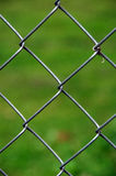 Chain Link Fence, Green Background Royalty Free Stock Images