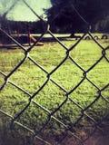 Fenced Fun stock photos