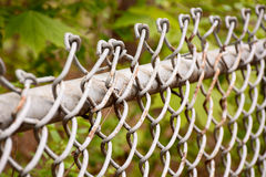 Chain link fence. Selective focus on a chain link fence at a park Royalty Free Stock Photo