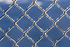 Chain link fence with snow Royalty Free Stock Photo