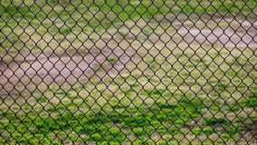 Chain link fence in a sports park with grassy field behind it royalty free stock photo