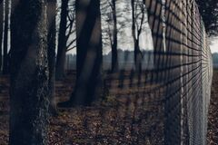 Chain Link Fence With Trees in Background during Twilight Stock Photography