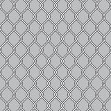 Chain Link Fence. Wire Mesh Royalty Free Stock Images