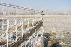 Chain link fencing Royalty Free Stock Image