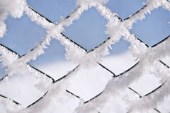Chain link hoarfrost. Chain link fence with hoarfrost morning stock photography