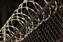 Chain linked razor wire fense. A chain linked fense with razor wire on top  and a palm tree in the background at night. Taken in Hermosillo Mexico in May 2015 Royalty Free Stock Image