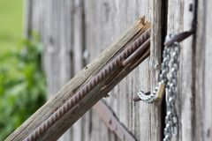 Chain lock on wooden wall. Very strong chain offer safe look together with lock on it Royalty Free Stock Photography