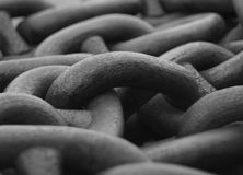 Chain macro. Stock Images