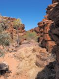 Chain of ponds walk near John Hayes rockhole, Trephina Gorge Stock Images