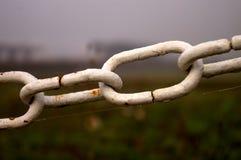 chain rostig white Royaltyfri Foto