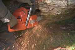 Chain saw in action Royalty Free Stock Image