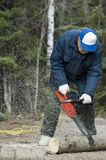 Chain saw in action. Active senior cutting a fallen tree with a chain saw stock photography