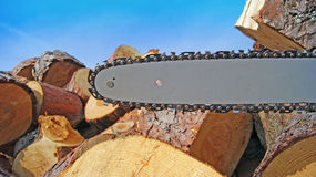 Chain saw. Chainsaw blade and Wood background Stock Photography