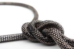 Chain the snake Stock Photos