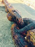 chain trä Royaltyfri Bild