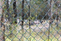 Chain Wire fence surrounding a cemetary Royalty Free Stock Photography