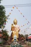 CHAINAT THAILAND - APRIL 14: guld- Buddhastatyer i tempel, C Royaltyfri Bild
