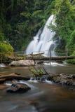 chaing mai Pa dok seaw美丽的瀑布,泰国 免版税库存图片