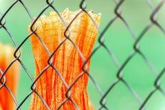Chainlink橙色篷布篱芭和片断  免版税库存图片