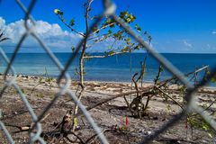 Chainlink fence blocking off recovering area of beautiful Florida Keys beach after being destroyed by Hurricane Irma. In 2017 Stock Image