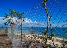 Chainlink fence blocking off recovering area of beautiful Florida Keys beach after being destroyed by Hurricane Irma in 2017. Chainlink fence blocks off Royalty Free Stock Photography