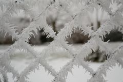 Chainlink fence with ice crystals Stock Photo