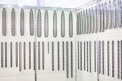Chains for gasoline and electric saws in store Stock Photography