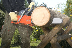 The chainsaw stock images