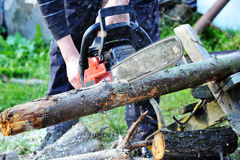 Chainsaw. Blade cutting log of wood stock photo
