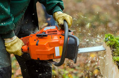 Chainsaw. A lumberjack with his chainsaw in action stock images