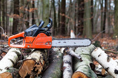 Chainsaw. A chainsaw in the forest Stock Photos