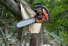 chainsaw Royaltyfria Foton
