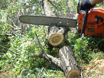 chainsaw fotografia de stock