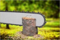 chainsaw Fotografía de archivo