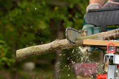 chainsaw foto de stock royalty free