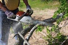 chainsaw Fotos de Stock