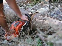 chainsaw filme