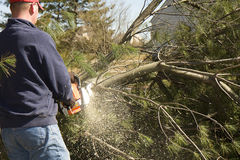 Chainsaw in Action Royalty Free Stock Images