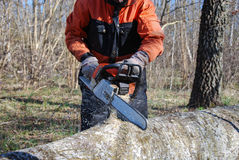 Chainsaw in action Stock Images
