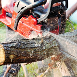 Chainsaw Royalty Free Stock Images