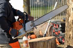 Chainsaw blade cutting log of wood stock photography