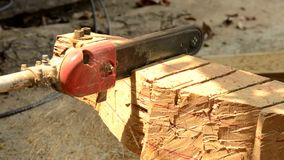The chainsaw blade cutting wood. stock footage