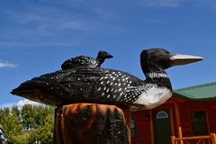 Chainsaw carvings of loons. A wooden mother loon and a baby sitting on her back rest on a log after being carved by a chainsaw Stock Photo