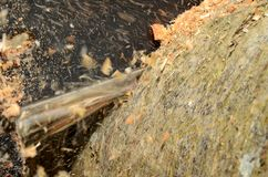 Chainsaw close up Royalty Free Stock Photo