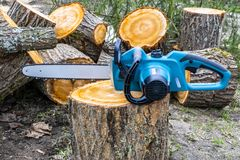 Chainsaw. Close-up of woodcutter sawing chain saw. Close up professional chainsaw blade cutting log of wood. Chainsaw bar. And cutting chain. Blade of a Stock Photography
