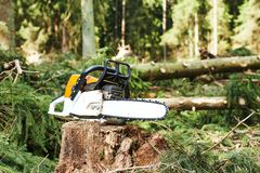 Chainsaw on cut wood in forest Royalty Free Stock Photography